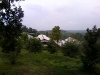 Atap kandang, dikelilingi kebun jeruk, sawo, dan lombok